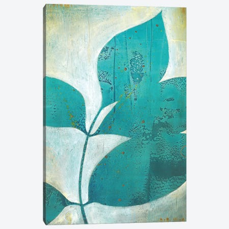 Foliation I Canvas Print #SDA2} by Stacy D'Aguiar Canvas Print