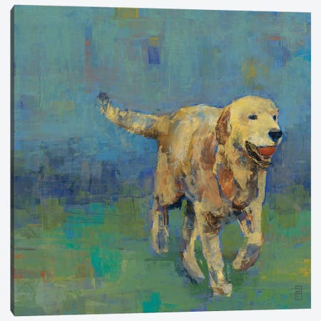 Play Time II Canvas Print #SDA5} by Stacy DAguiar Canvas Artwork
