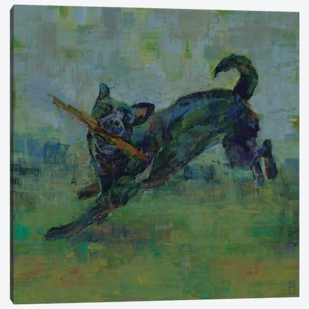Play Time III Canvas Print #SDA6} by Stacy DAguiar Canvas Art