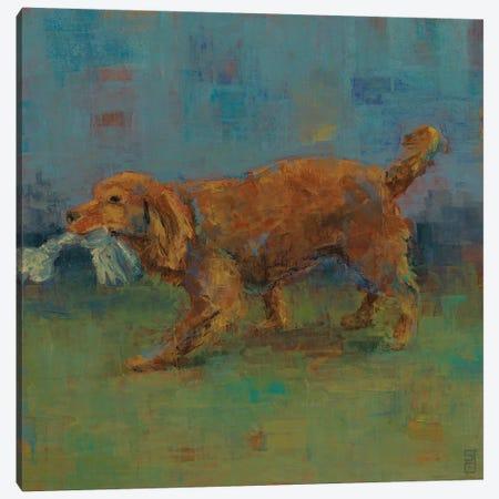 Play Time IV Canvas Print #SDA7} by Stacy DAguiar Canvas Wall Art