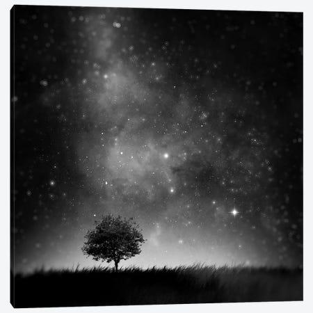 Not So Alone Canvas Print #SDG115} by Sebastien Del Grosso Canvas Artwork