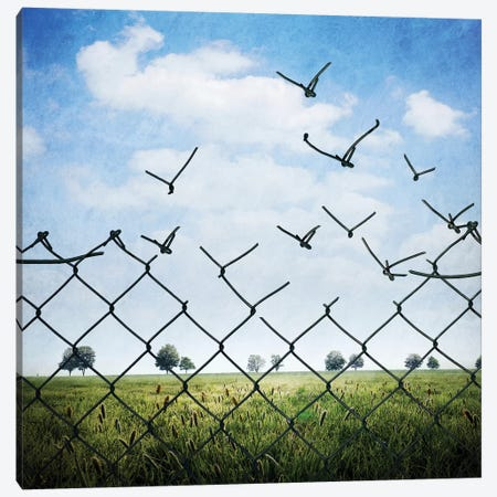 L'Enfermement Est Qu'Illusion Canvas Print #SDG133} by Sebastien Del Grosso Art Print