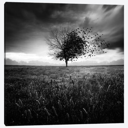 Illusion D'un Printemps Perdu Canvas Print #SDG149} by Sebastien Del Grosso Canvas Art