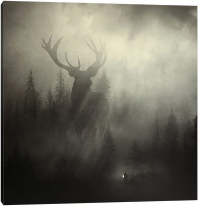 Guardian Of The Forest II Canvas Art Print