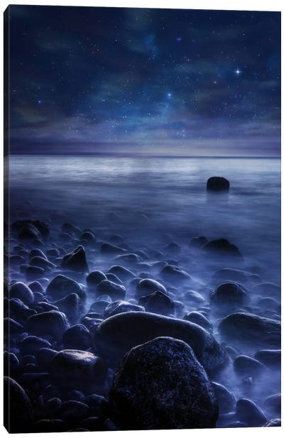 Existence Canvas Art Print
