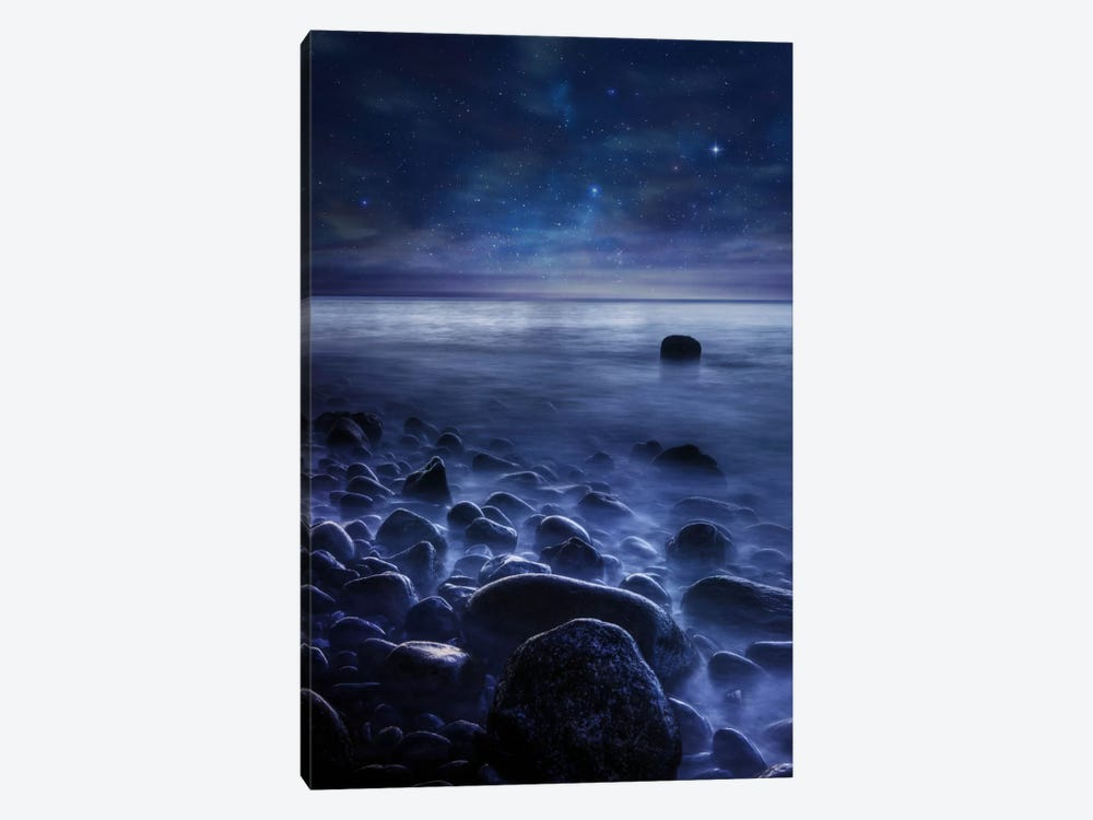 Existence by Sebastien Del Grosso 1-piece Canvas Artwork