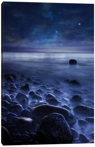 Existence Canvas Art Print