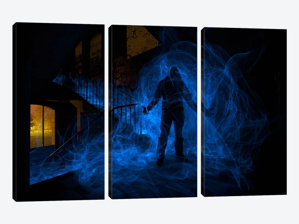 Possession 3-piece Canvas Wall Art