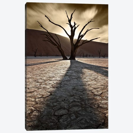 Survivors Of The Past II Canvas Print #SDG89} by Sebastien Del Grosso Canvas Print