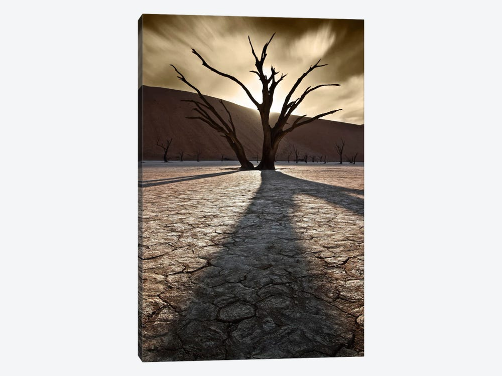 Survivors Of The Past II by Sebastien Del Grosso 1-piece Canvas Wall Art