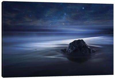 Blue Velvet II Canvas Art Print