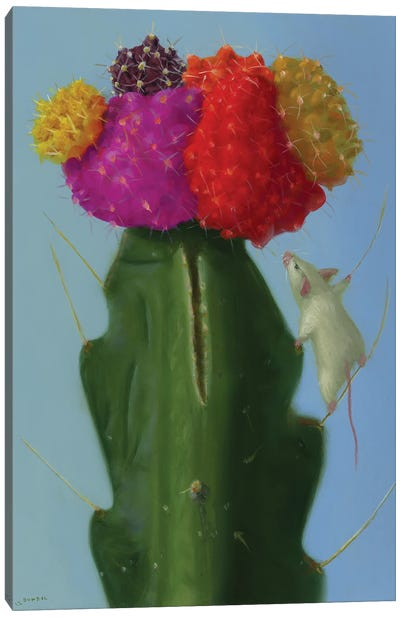 Cactus Climber Canvas Art Print