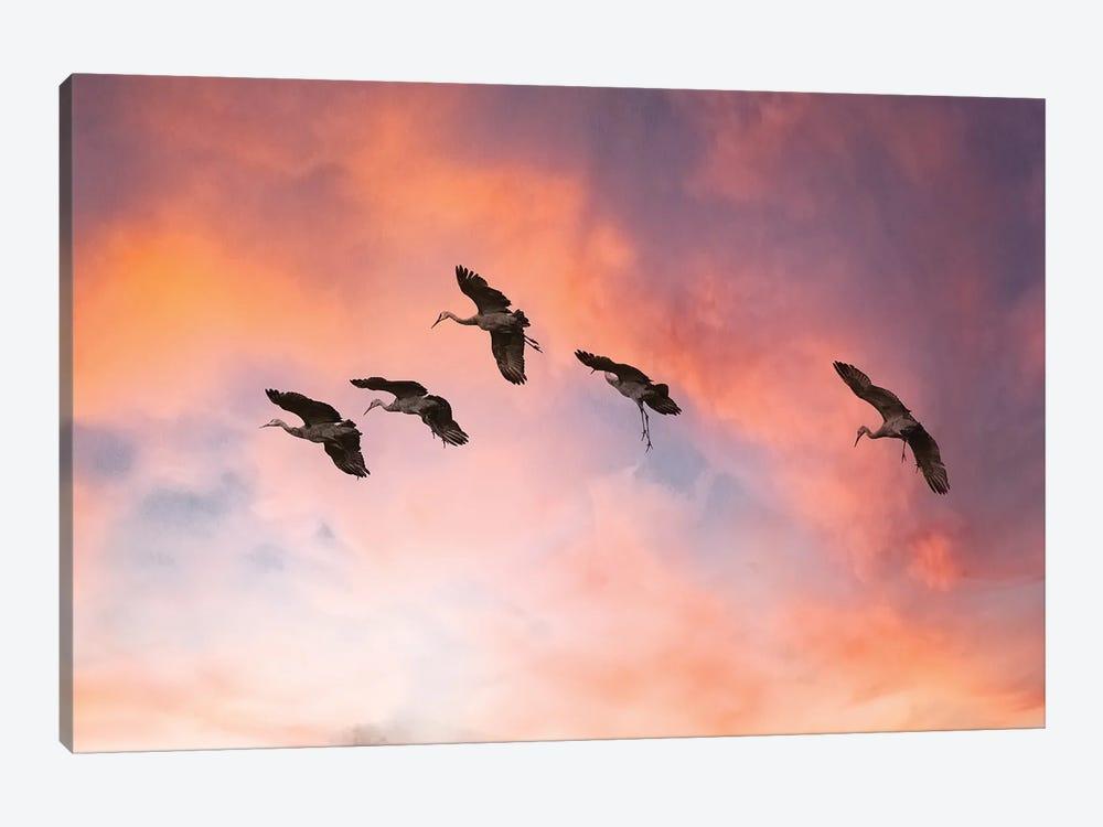 Sandhill Crane High Five by Sandra Rust 1-piece Canvas Print