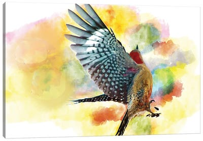Red Bellied Woodpecker Dances For A Seed Canvas Art Print