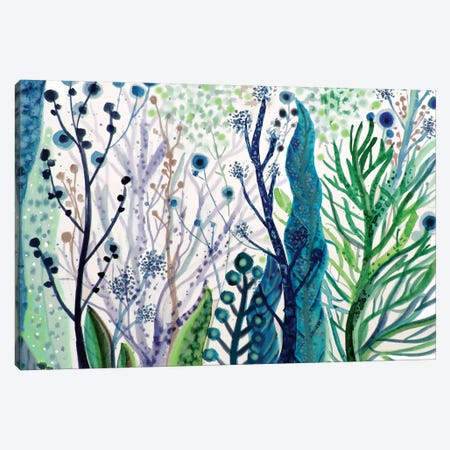 Algae Canvas Print #SDS102} by Sylvie Demers Canvas Art