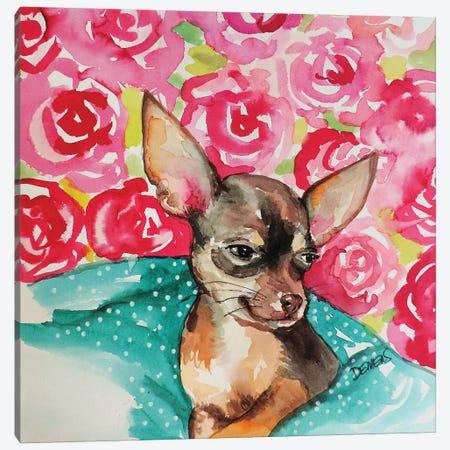 Lola Chihuahua Canvas Print #SDS241} by Sylvie Demers Canvas Art Print