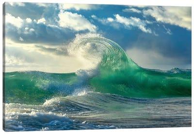 Green Scythe Canvas Art Print