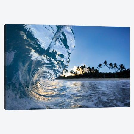Hawaiian Crystal Canvas Print #SDV118} by Sean Davey Canvas Print