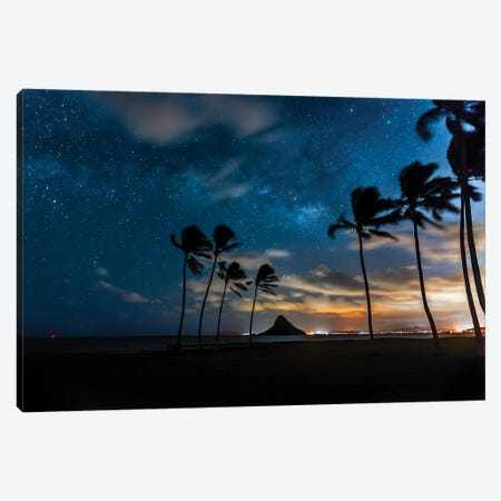 Hawaiian Stardust Canvas Print #SDV120} by Sean Davey Canvas Art