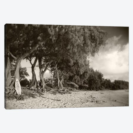 Home Sepia Canvas Print #SDV123} by Sean Davey Canvas Art