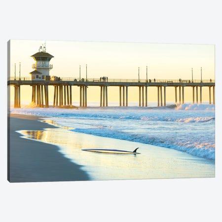 Huntington Beach Pier Canvas Print #SDV125} by Sean Davey Art Print