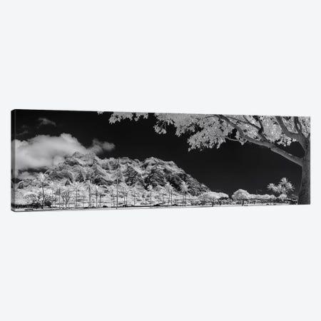 Kualoa Pods N Palms Canvas Print #SDV132} by Sean Davey Canvas Art Print