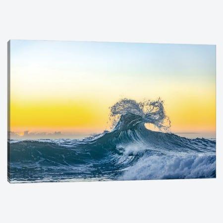 Lemon Inertia Canvas Print #SDV137} by Sean Davey Canvas Wall Art