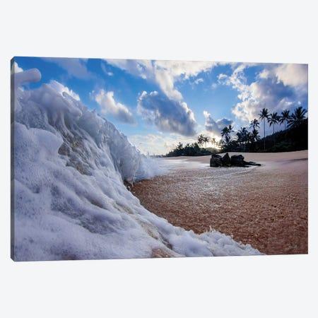 Beach Sweeper Canvas Print #SDV13} by Sean Davey Canvas Print