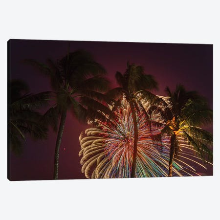 Peacock Palms Canvas Print #SDV168} by Sean Davey Canvas Art