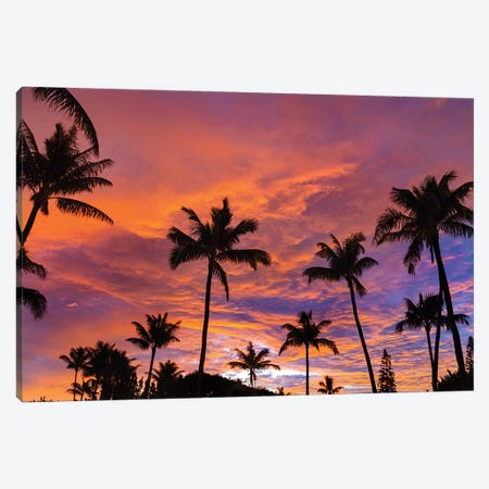 Pink Cloud Sunrise Canvas Print #SDV169} by Sean Davey Canvas Artwork