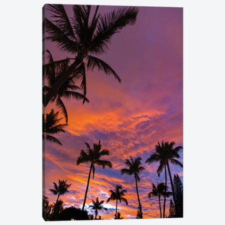 Pink Cloud Sunrise Vert Canvas Print #SDV170} by Sean Davey Art Print