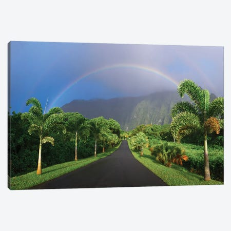 Rainbow Road Canvas Print #SDV178} by Sean Davey Canvas Print