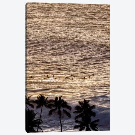 Beyond The Palms Canvas Print #SDV18} by Sean Davey Canvas Print