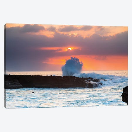 Sea Flare Canvas Print #SDV194} by Sean Davey Canvas Art