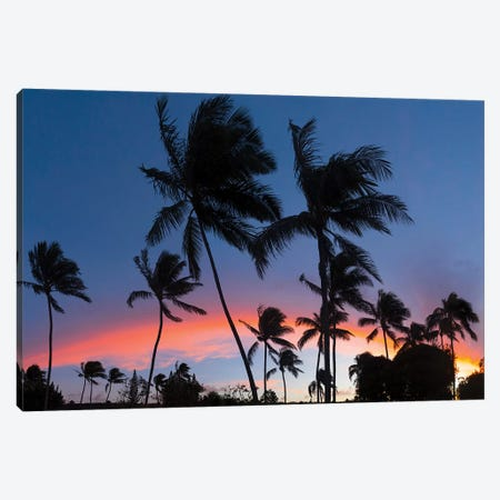 Sunset Rainbow Canvas Print #SDV230} by Sean Davey Canvas Art