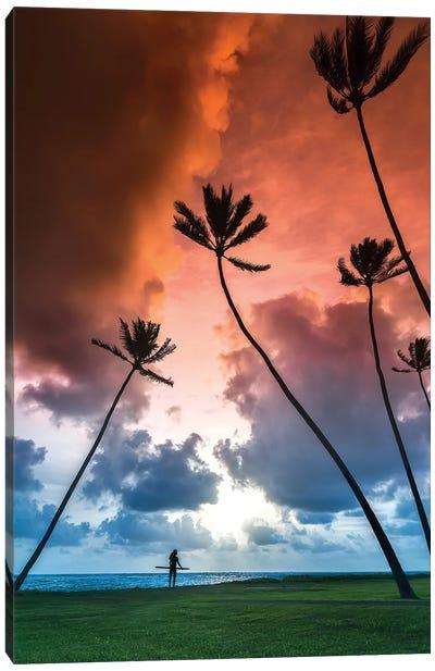 Towering Palms Canvas Art Print