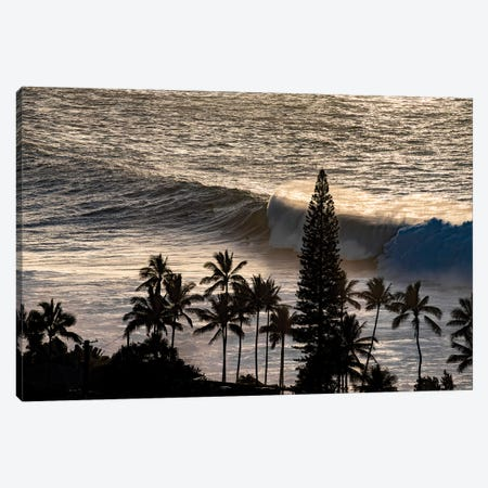 Waimea Silhouettes Canvas Print #SDV255} by Sean Davey Art Print