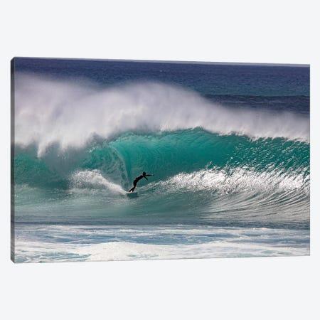 Aqualine Canvas Print #SDV267} by Sean Davey Canvas Artwork