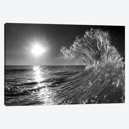 Follow Me In Black And White Canvas Print #SDV288} by Sean Davey Canvas Print
