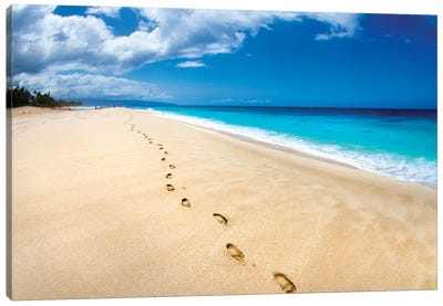 Footprints Of Tranquility Canvas Art Print