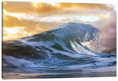 Water Claw Canvas Art Print