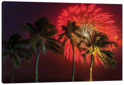 Firework Palms Canvas Art Print