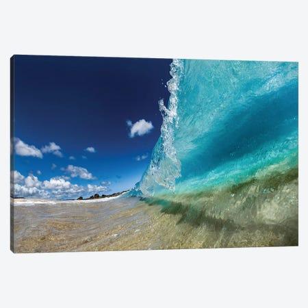 Aquatic Surge Canvas Print #SDV8} by Sean Davey Canvas Art Print