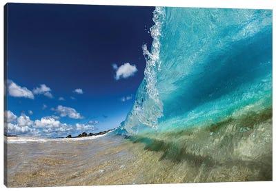 Aquatic Surge Canvas Art Print