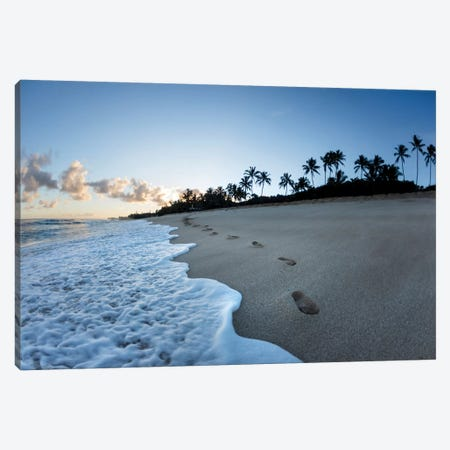 Footsteps To Paradise Canvas Print #SDV90} by Sean Davey Canvas Print