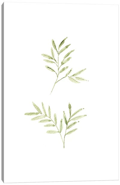 Leaf Study No. 1 Canvas Art Print