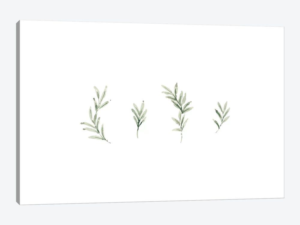 Leaf Study No. 2 by Melissa Selmin 1-piece Canvas Print