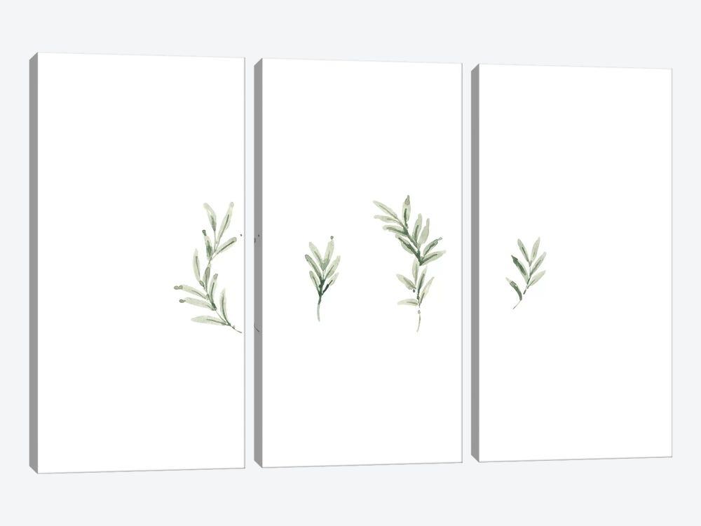 Leaf Study No. 2 by Melissa Selmin 3-piece Canvas Print