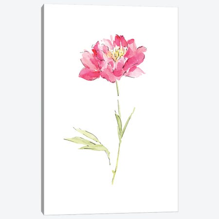 Pink Peony Canvas Print #SEL38} by Melissa Selmin Canvas Artwork