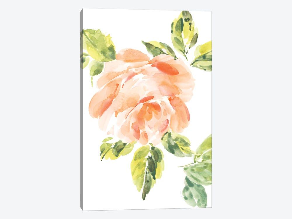 Rosa No. 3 by Melissa Selmin 1-piece Canvas Art